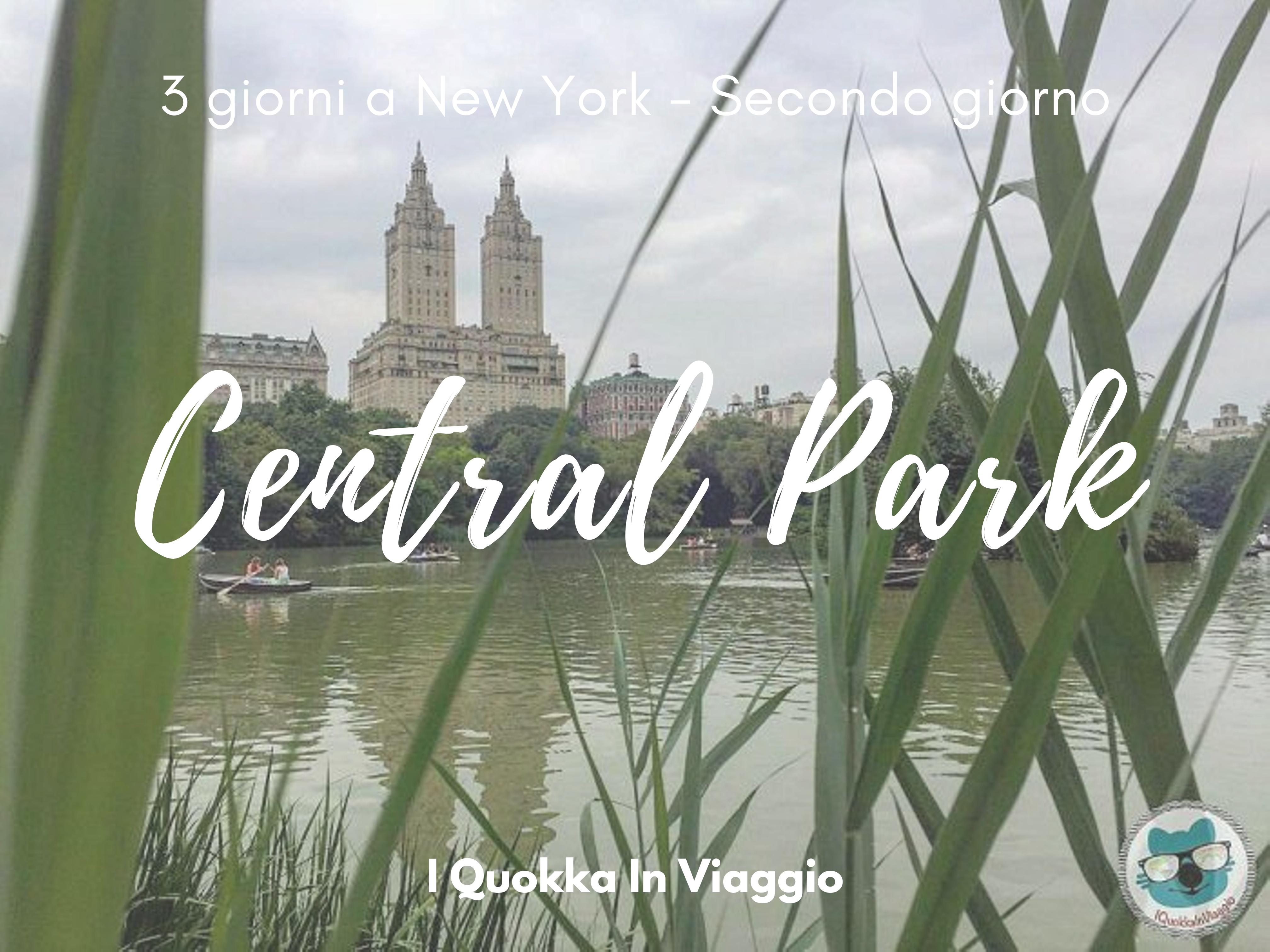 Prato Rigenerante Come Funziona 3 giorni a new york - secondo giorno - i quokka in viaggio