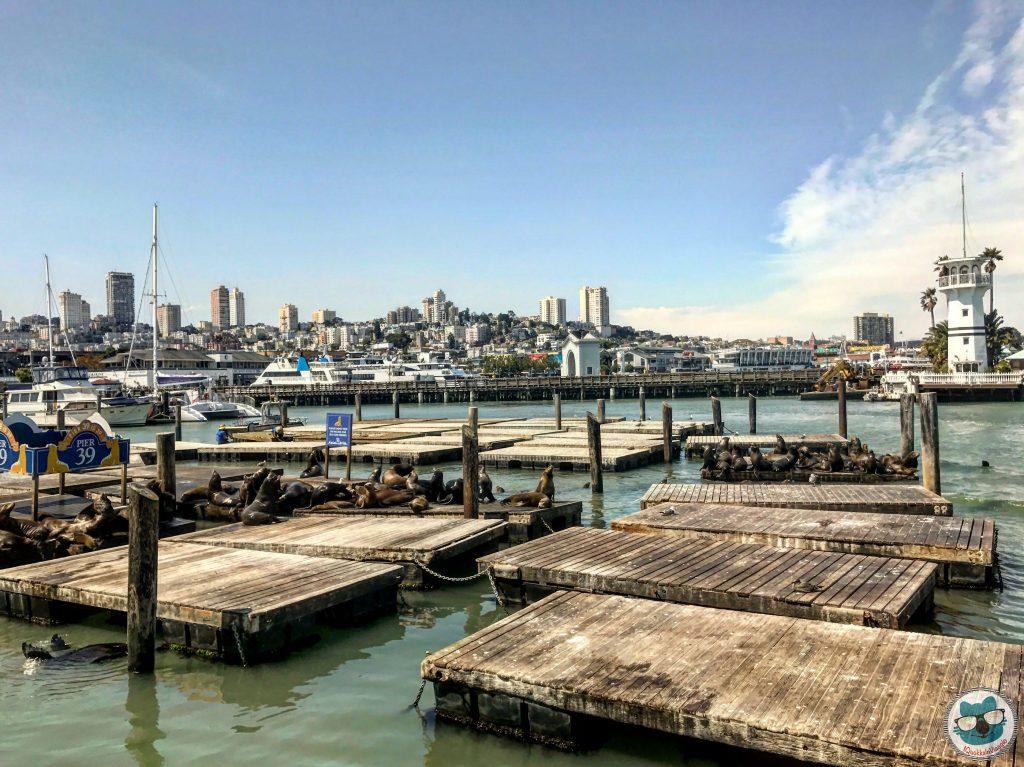 San Francisco - Leoni Marini