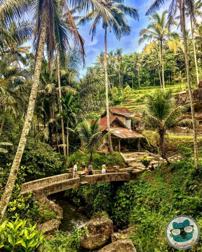 Cosa Vedere a Bali - Itinerario Est - Pura Gunung Kawi Jungle