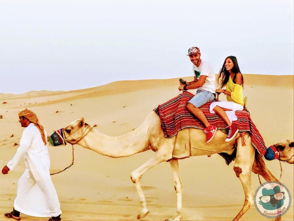 Abu Dhabi - Cammello