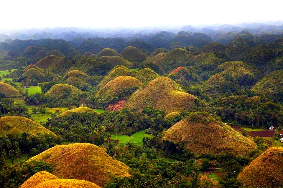 Filippine - Bohol Chocolate Hills